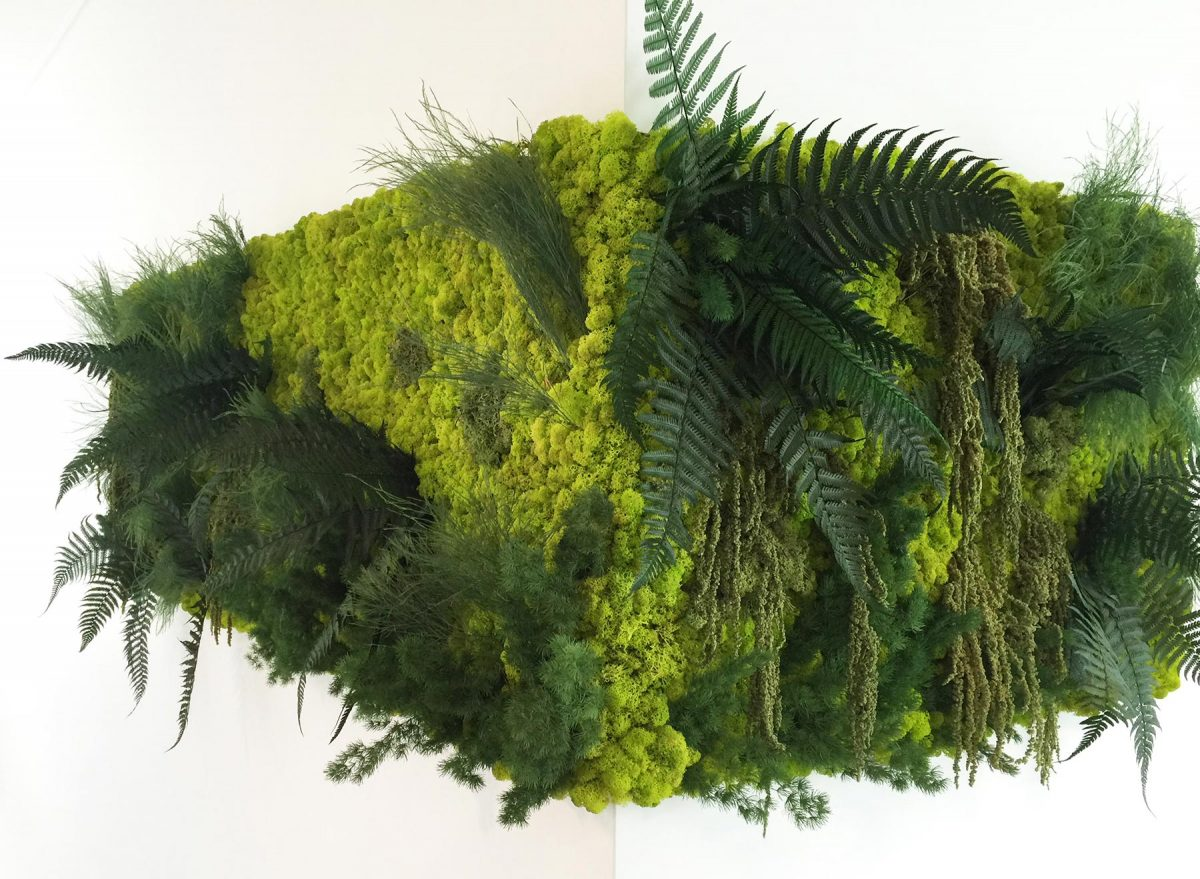 Stem & Stamen Greenwall