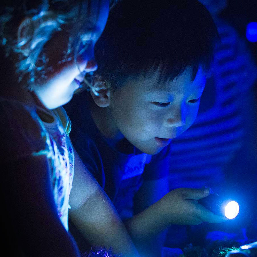 Children playing with torches in the dark